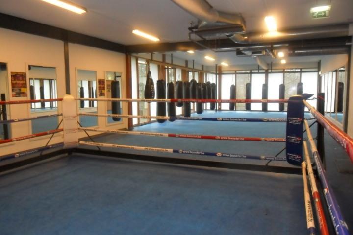 boksring SportsArt